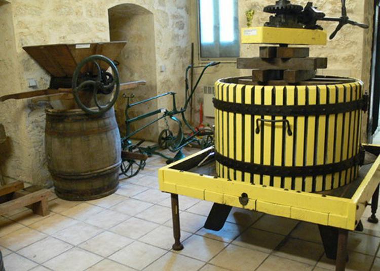 Visite Des Caves De La Confrérie Des Coteaux De Sucy à Sucy en Brie