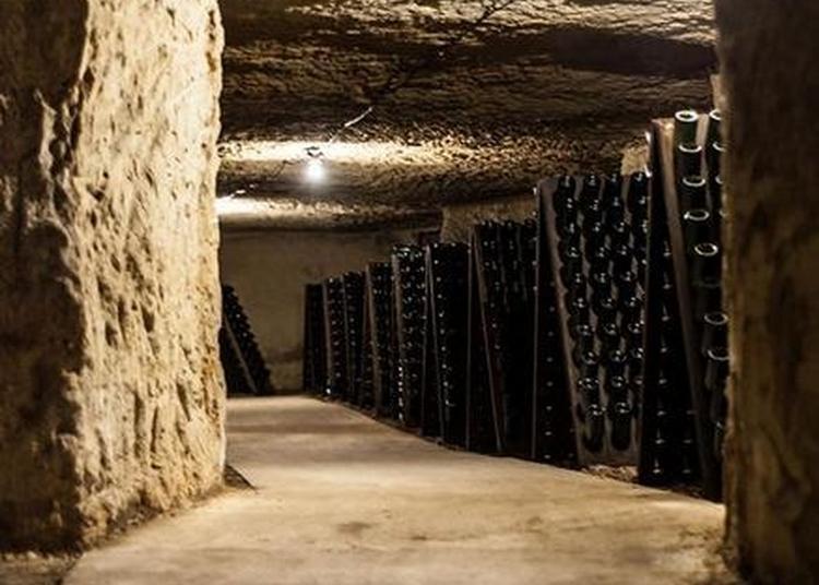 Visite Des Caves Du Domaine à Rochecorbon