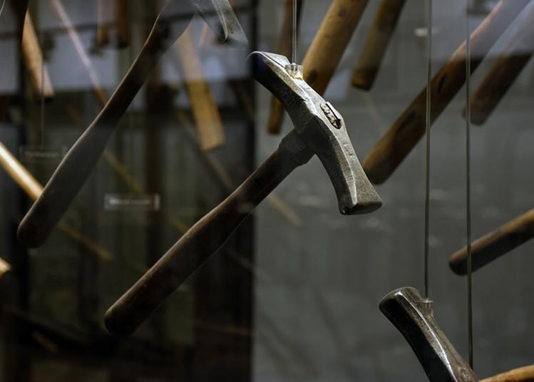Visite Des Collections Permanentes à Troyes