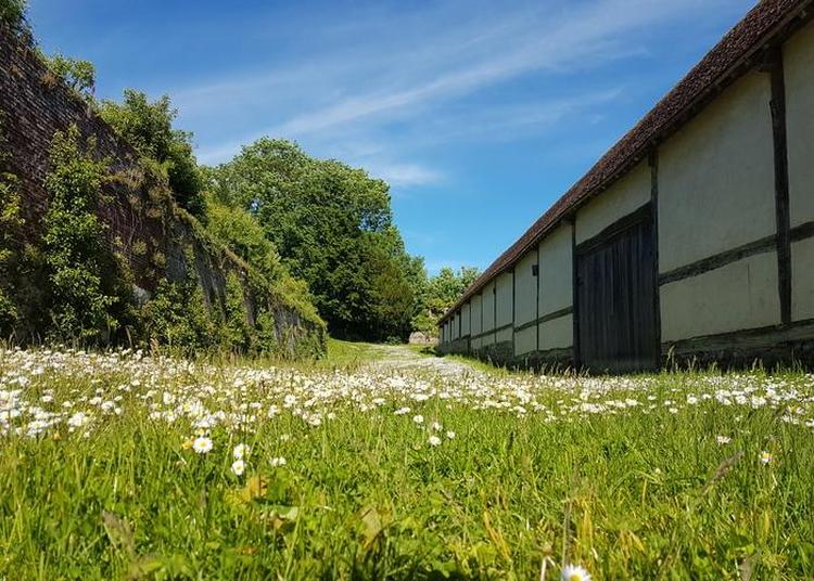 Visite Des Jardins De L'abbaye De Saint-riquier à Saint Riquier