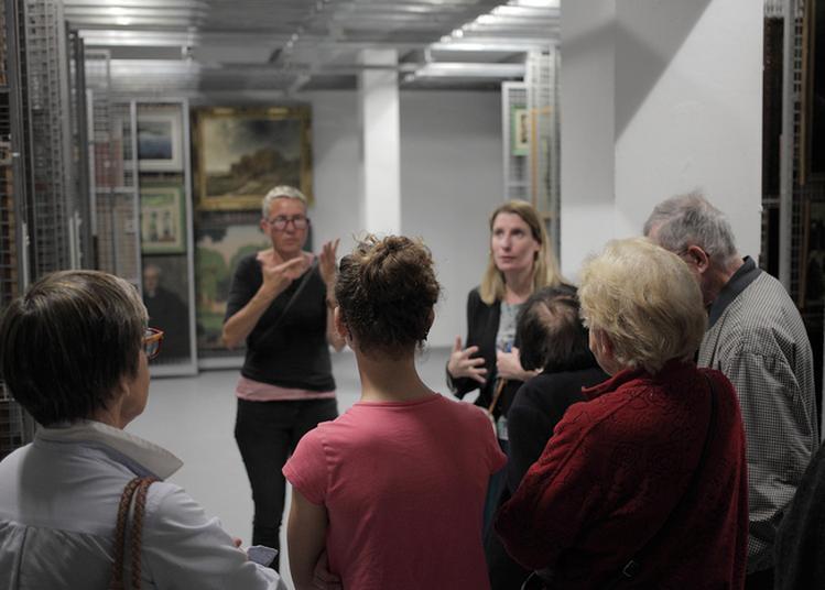 Visite Des Réserves Du Musée à Brest