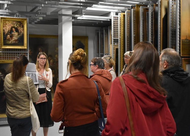 Visite Des Réserves Du Musée Des Beaux-arts à Brest