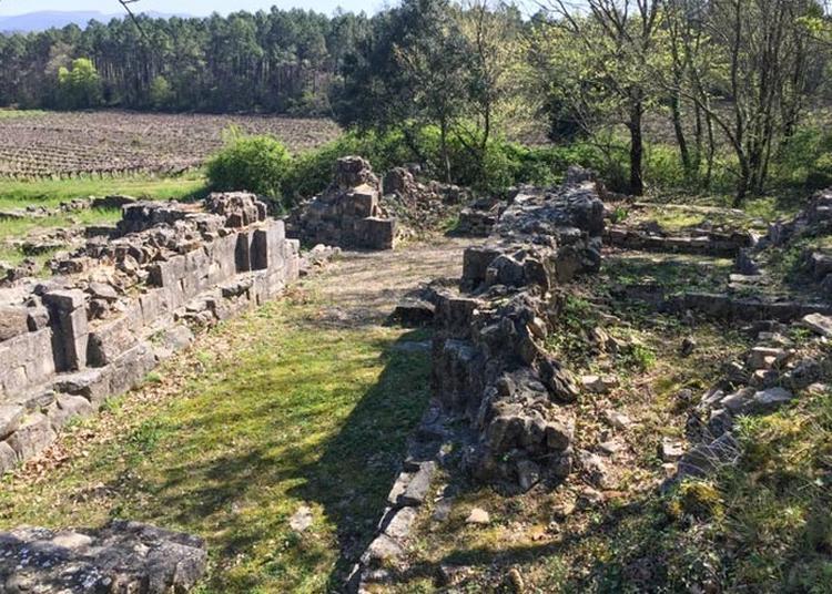 Visite Des Ruines à Vagnas