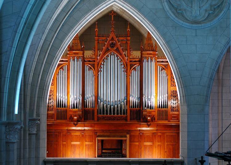 Visite Du Buffet D'orgue Et Démonstration De Jeu D'orgue à Toulouse