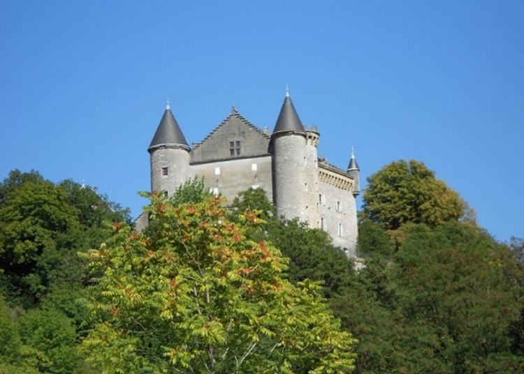 Visite Du Château à Culoz