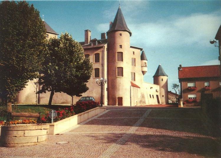 Visite Du Château De Luttange