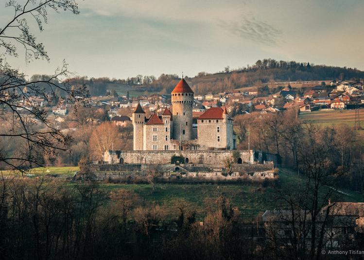 Visite Du Château De Montrottier à Lovagny