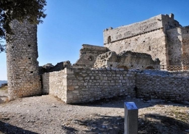 Visite Du Château De Thouzon à Le Thor