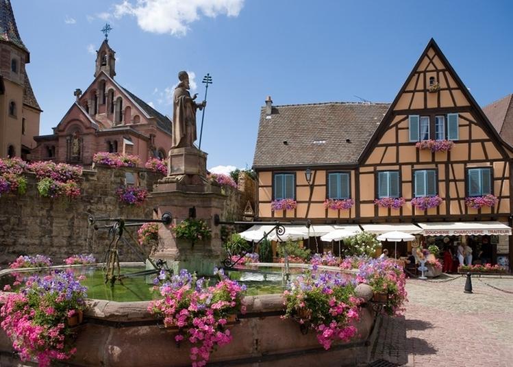 Visite Du Château Des Comtes D'eguisheim à Eguisheim