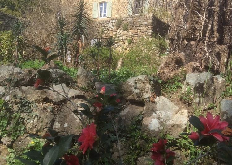 Visite Du Château Et Des Jardins Du Pin à Fabras