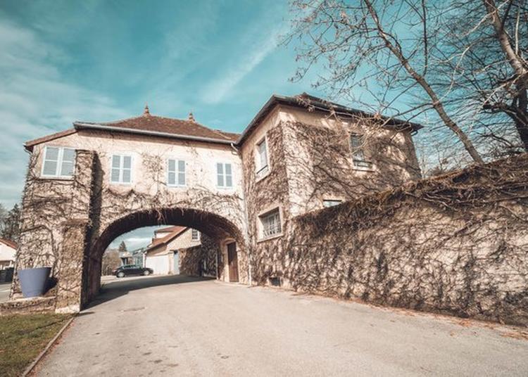 Visite Du Coeur De Ville De Saint-amour à Saint Amour