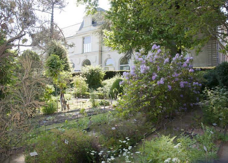Visite Du Jardin Botanique De La Faculté De Santé D'angers à Angers