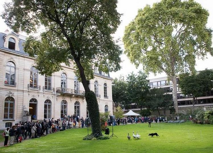 Visite Du Ministère De L'agriculture Et De L'alimentation à Paris 7ème