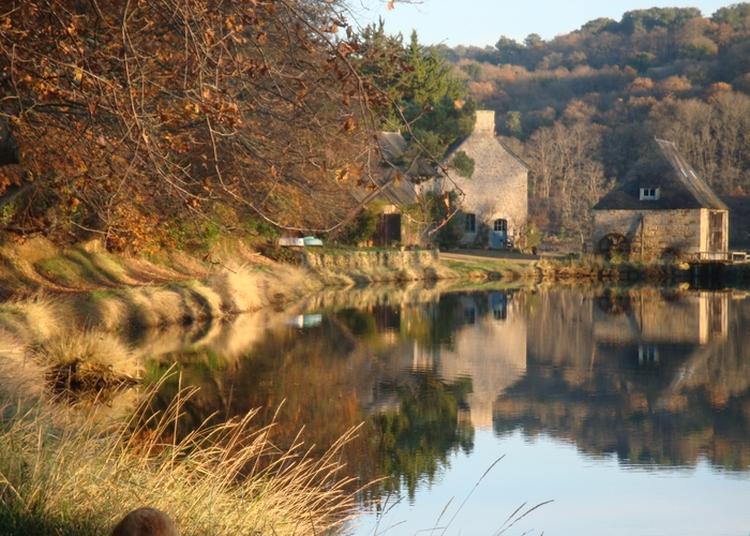 Visite Du Moulin à Marée De Traou Meur à Pleudaniel