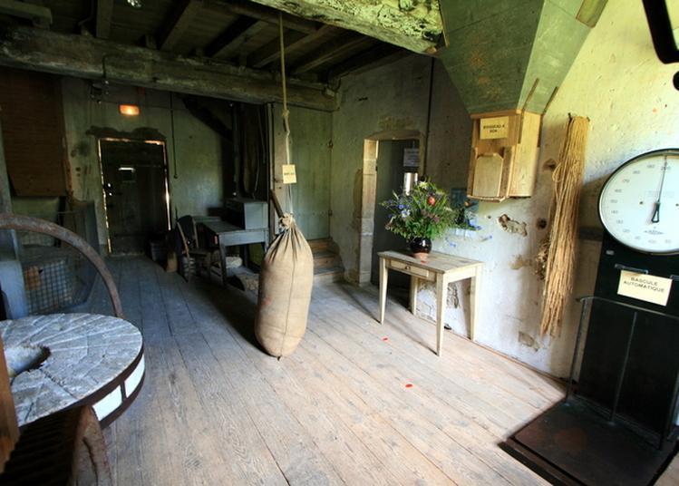 Visite Du Moulin Chevalier à Messanges