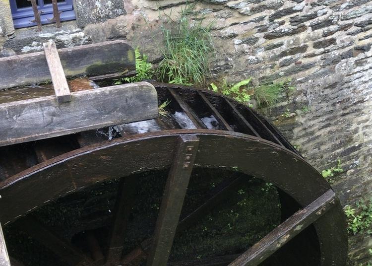 Visite Du Moulin De Lançay Et Fabrication De Pain à Questembert