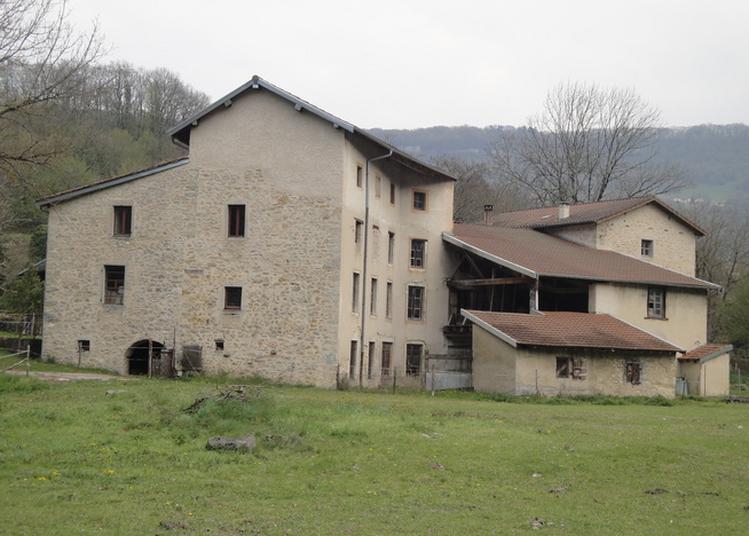 Visite Du Moulin De Torcieu