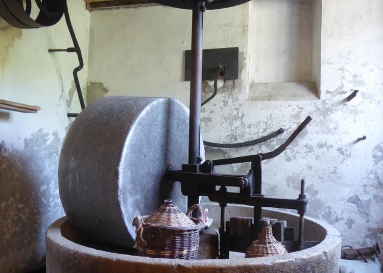 Visite Du Moulin Des Ayes Et De Son Jardin Ethnobotanique à Crolles