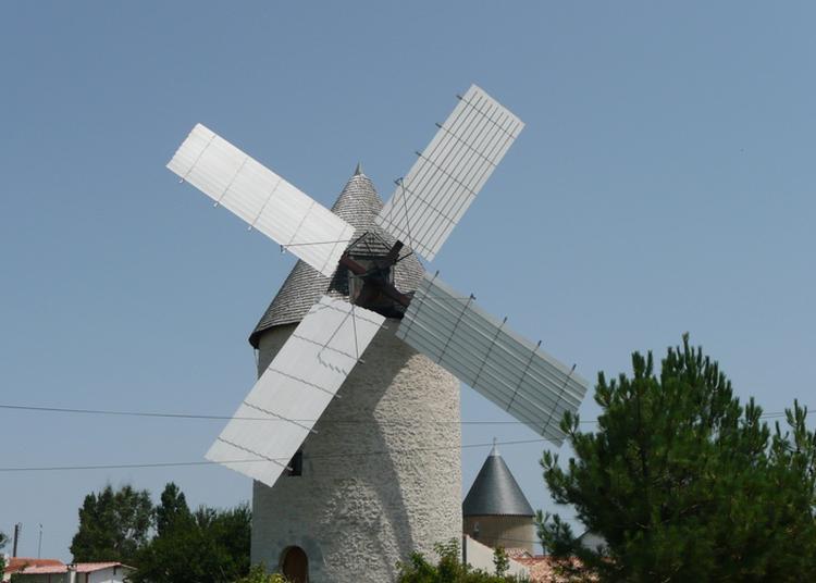 Visite Du Moulin Et De La Maison Meunière à Bourcefranc le Chapus