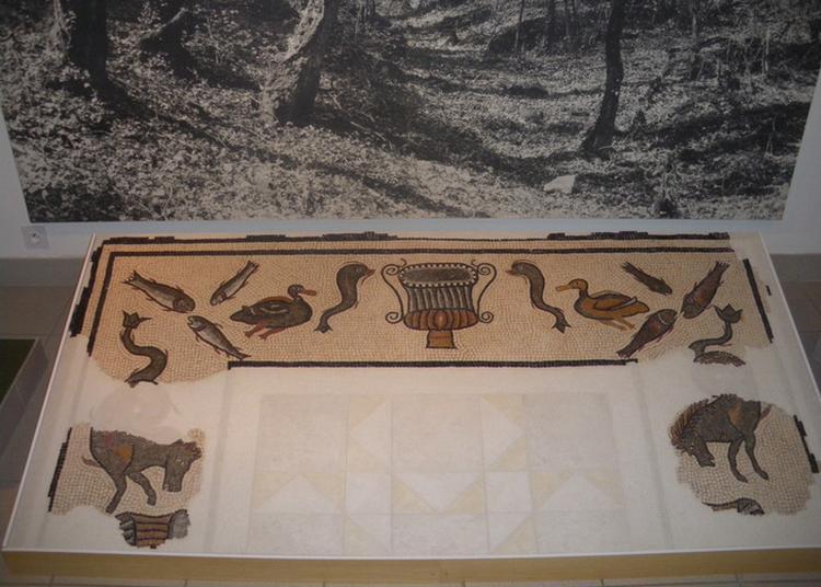 Visite Du Musée D'histoire De Liffol-le-grand à Grand