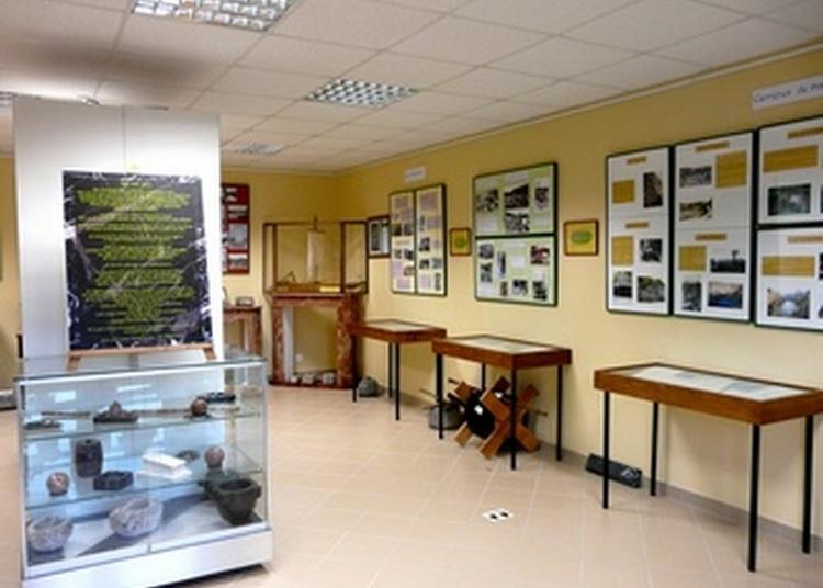 Visite Du Musée Du Marbre à Sable sur Sarthe