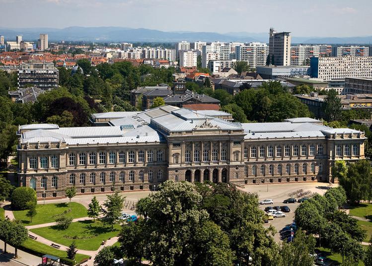 Visite Du Palais Universitaire à Strasbourg