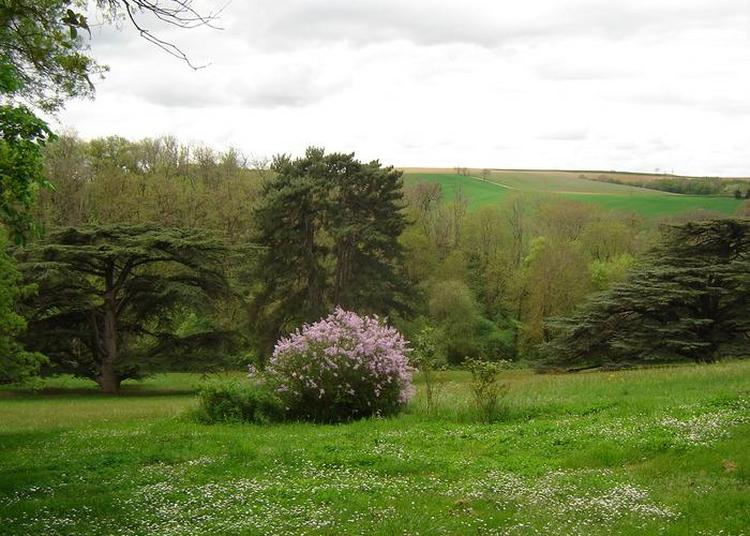 Visite Du Parc Du Château De Coulom à Gibel