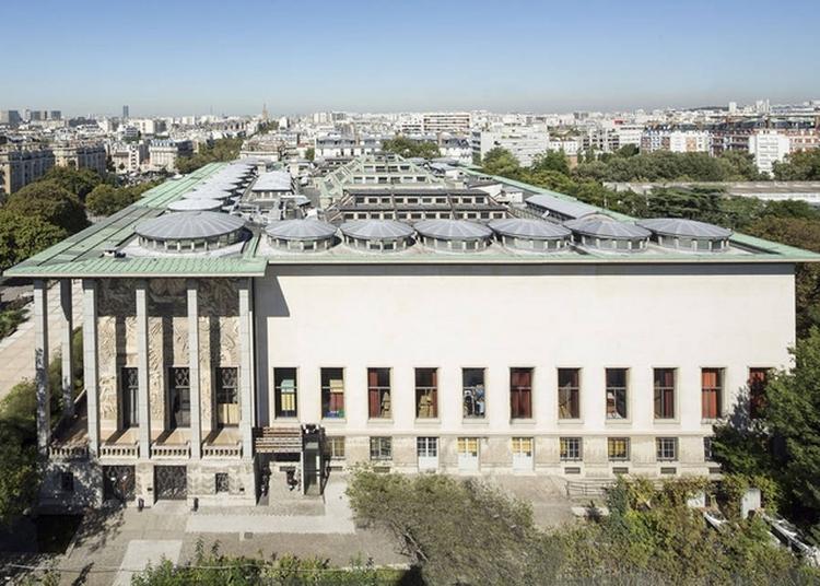 Visite Du Toit Du Palais De La Porte Dorée à Paris 12ème