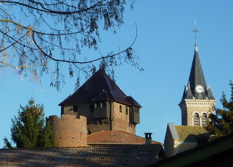 Visite Et Animations Au Château D'ambérieux-en-dombes à Amberieux en Dombes