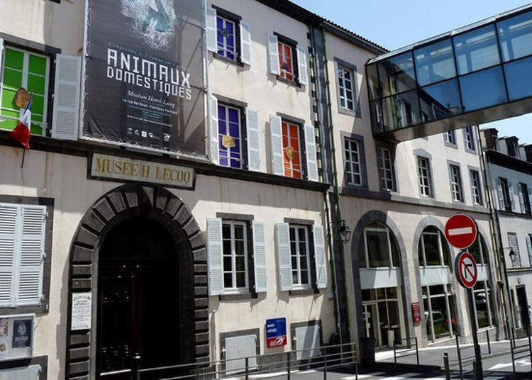 Visite Et Ateliers Au Muséum Henri-lecoq à Clermont Ferrand