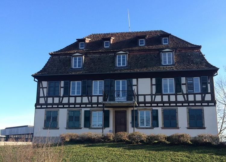 Visite Et Présentation De La Fondation René Cassin - Institut International Des Droits De L'homme à Strasbourg