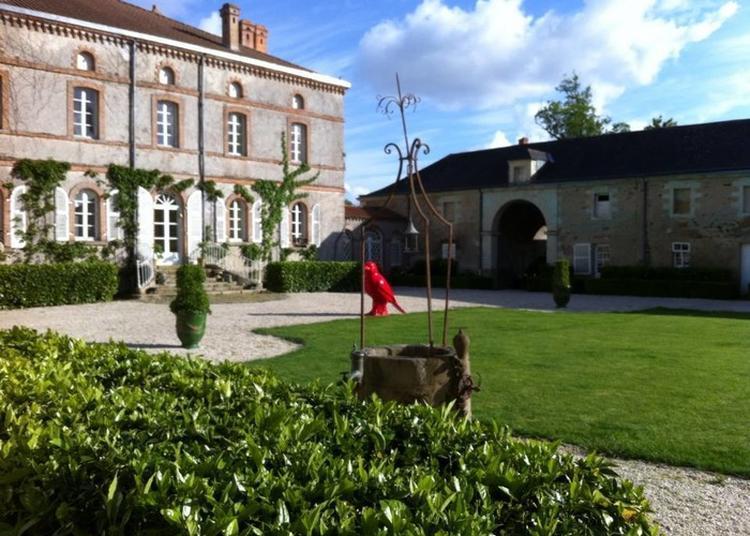 Visite Et Présentation Des Vignes Et Dégustation à Gorges