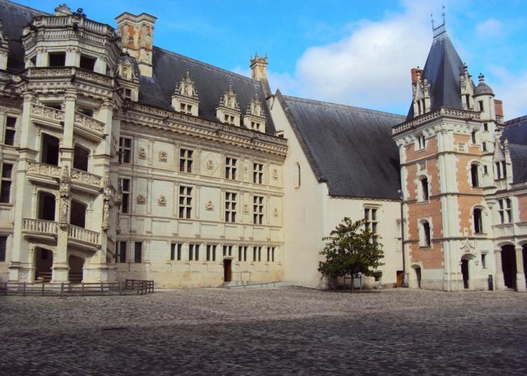 Visite Familiale Quatre Châteaux En Un à Blois