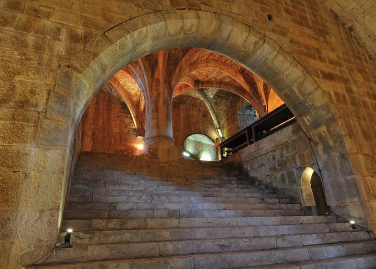 Visite Flash : L'architecture Militaire à La Renaissance 2 à Langres