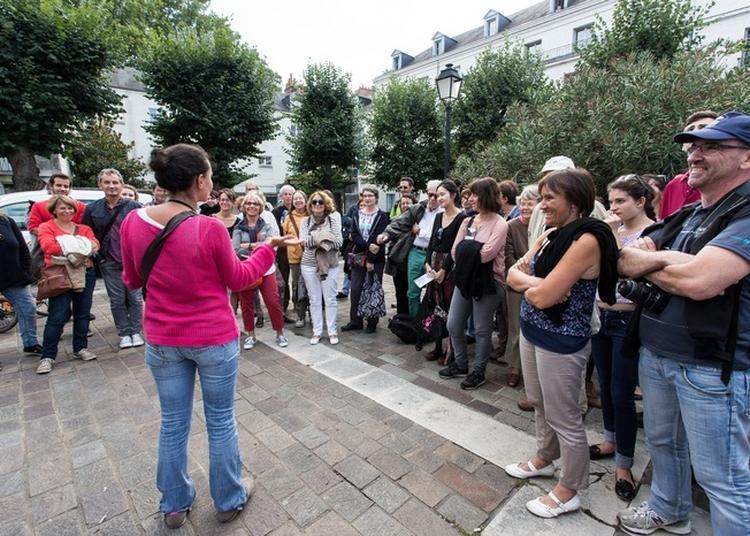 Visite Générale De La Ville  De Tours Présentée Par Un Guide-conférencier