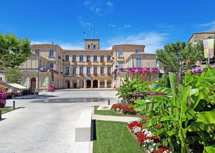 Visite Gratuite Du Château De Simiane à Valreas