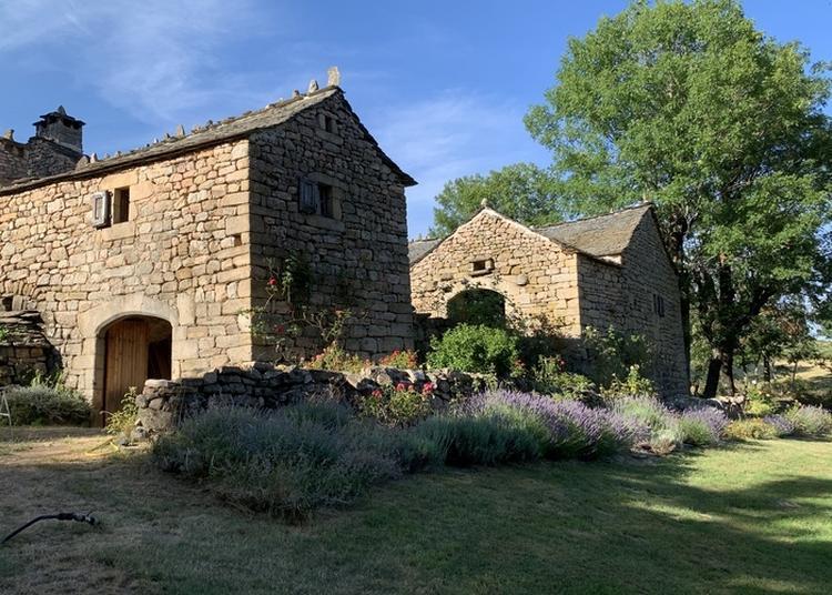 Visite Gratuite Du Mas De L'espinas à Montselgues