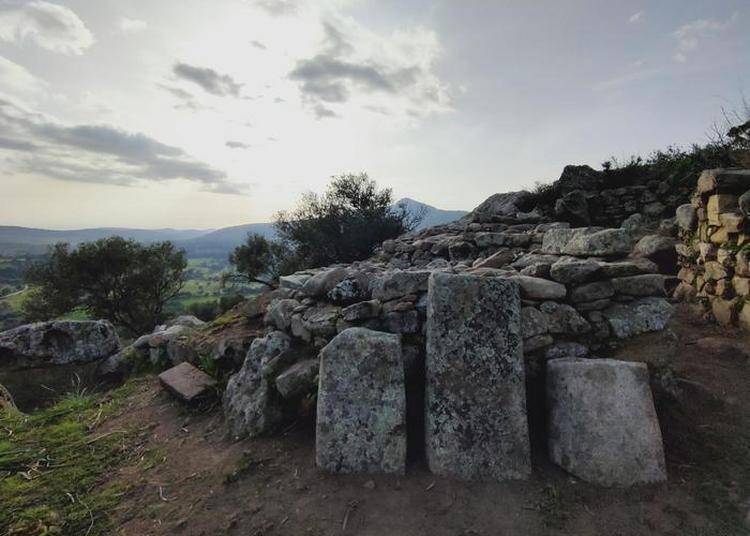 Visite Gratuite Du Site Préhistorique D'alò Bisujè à Bilia