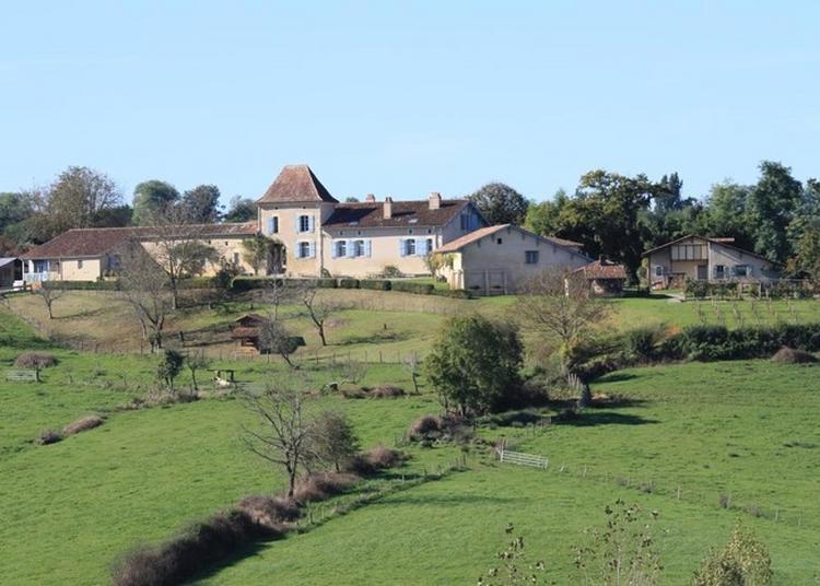 Visite Guidée à Montfort en Chalosse