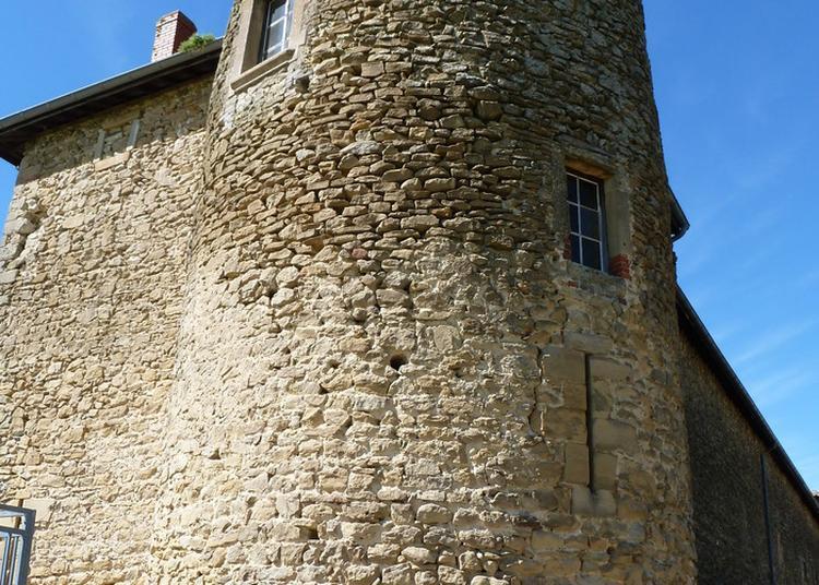 Visite Guidée à Montseveroux