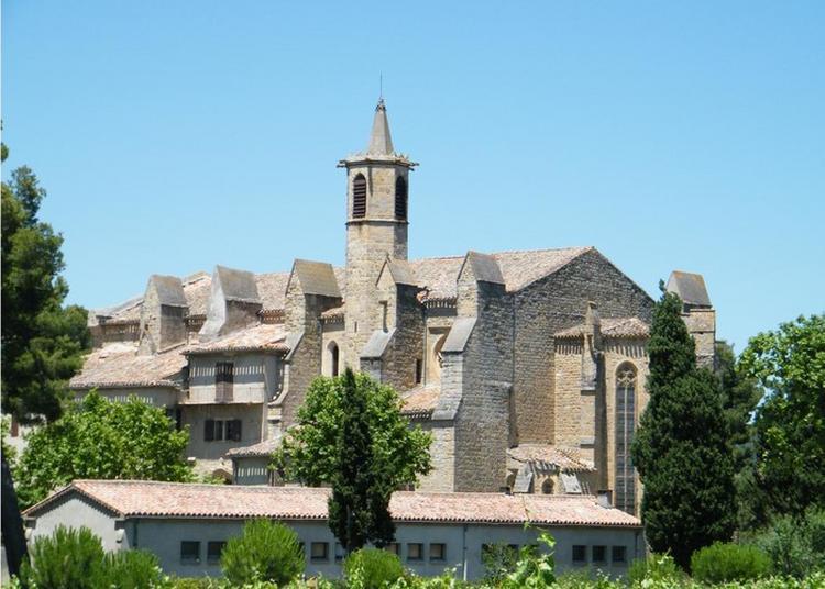 Visite Guidée à Limoux