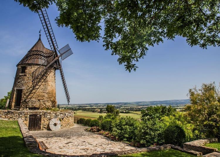 Visite Guidée à Castelnaudary