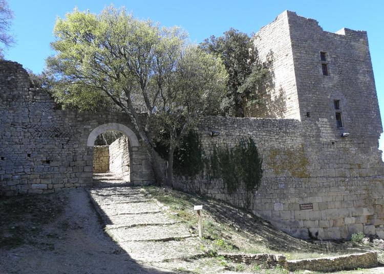 Visite Guidée à Chusclan