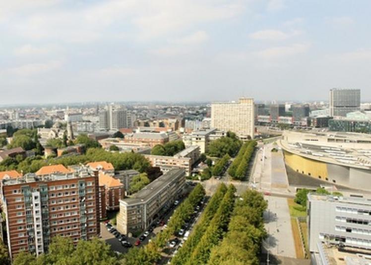 Visite Guidée à Lille