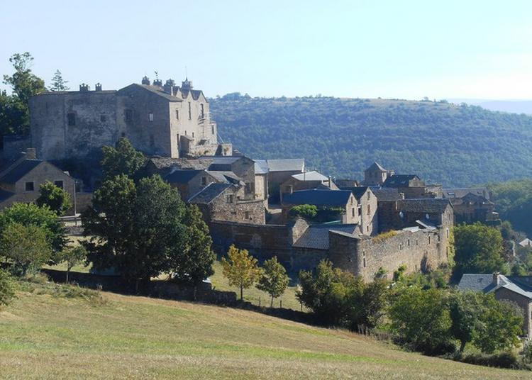 Visite Guidée à Castelnau Pegayrols
