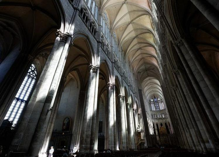 Visite Guidée à Amiens