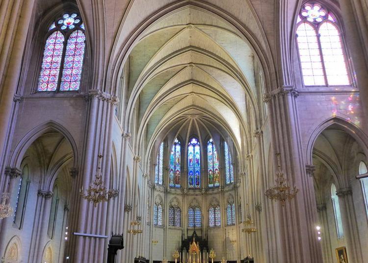 Visite Guidée - Cathédrale Saint-Pierre à Montpellier