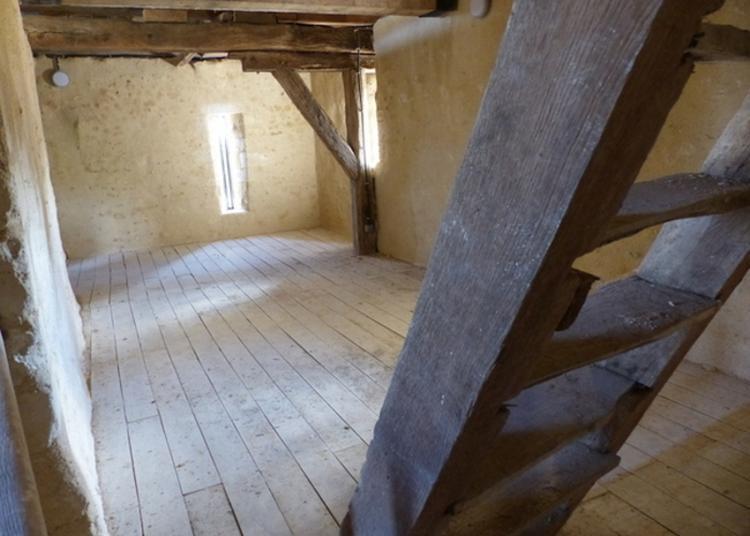 Visite Guidée à Chateau Renault