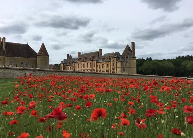 Visite Guidée Château de la Rivière à Pontgouin