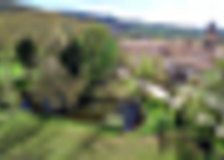 Visite Guidée à Soreze